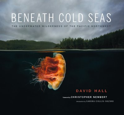 Beneath Cold Seas.
