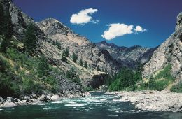 Middle Fork, Salmon River. Photo: Peter G. Williams