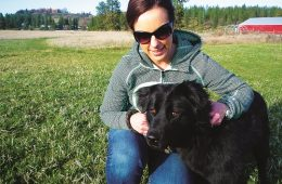 Susan is getting to know Baby, a 3 year old lab/chow mix, at the Spokane Humane Society. Photo: Brad Naccarato