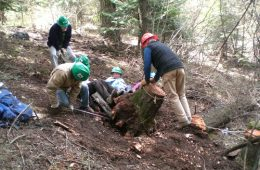 WTA volunteer trail crew hard at work improving our hiking trails. Photo: Holly Weiler