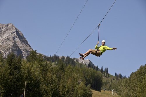 Zip lines at Fernie Alpine Resort. Photo courtesy of Tourism Fernie