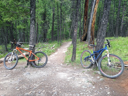 """""""You can tell whoever made these trails knew they were making happiness. You'll want to ride all day, then ride some more."""" Photo: Ammi Midstokke"""