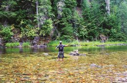 North Fork of the Coeur d'Alene River: An angler's paradise. Photo: David Uhlenkott