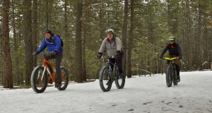 Finding the Right Fat Bike
