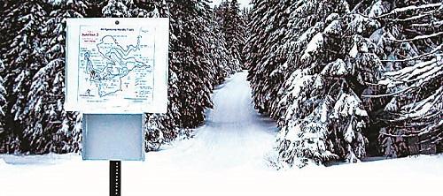 Don't Knock it Until You Loppet: Take the Mount Spokane Nordic Challenge