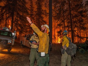 Photo courtesy of the U.S. Forest Service