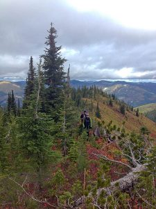 Lookout Pass backcountry. Photo: Derrick Knowles.