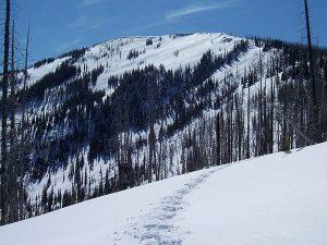 Climbing White Mtnsm