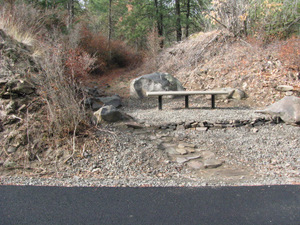 Fish Lake Trail Bench