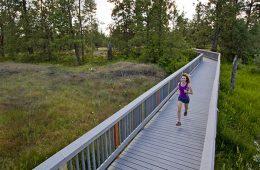 Photo of jogger running across bridge in Turnbull.