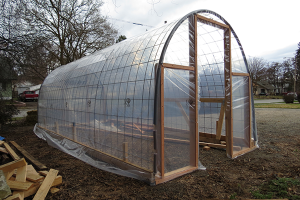 Photo of cattle panel greenhouse by Nick Thomas.