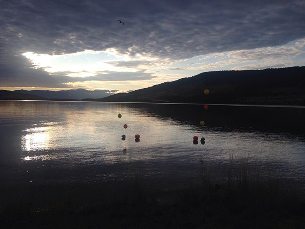 Photo of Flathead Lake courtesy of the Flathead Lake Swim Series.