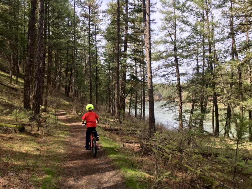 Photo of kid biking in Riverside State Park.