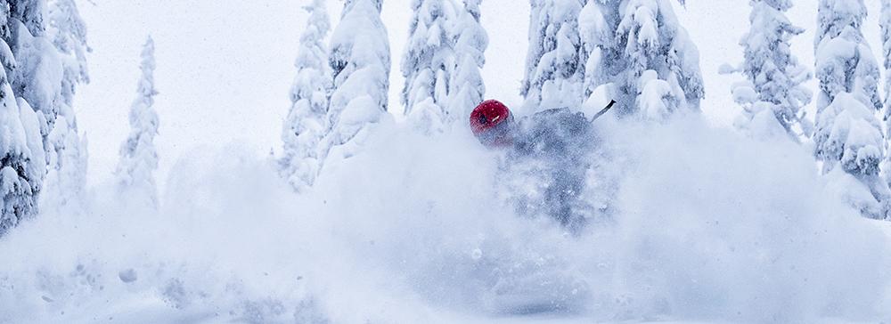 Photo of skier in deep powder.