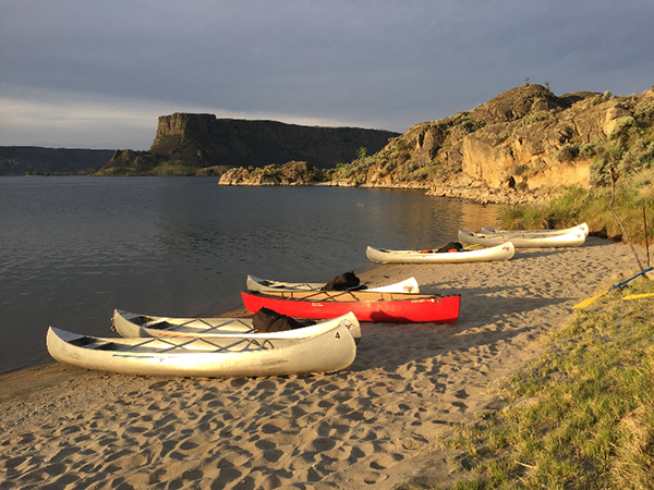 Photo of canoes lined up along the shore.