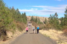 Photo of runners and walkers on paved trail.