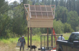 Photo of bat condo near completion during 2008.