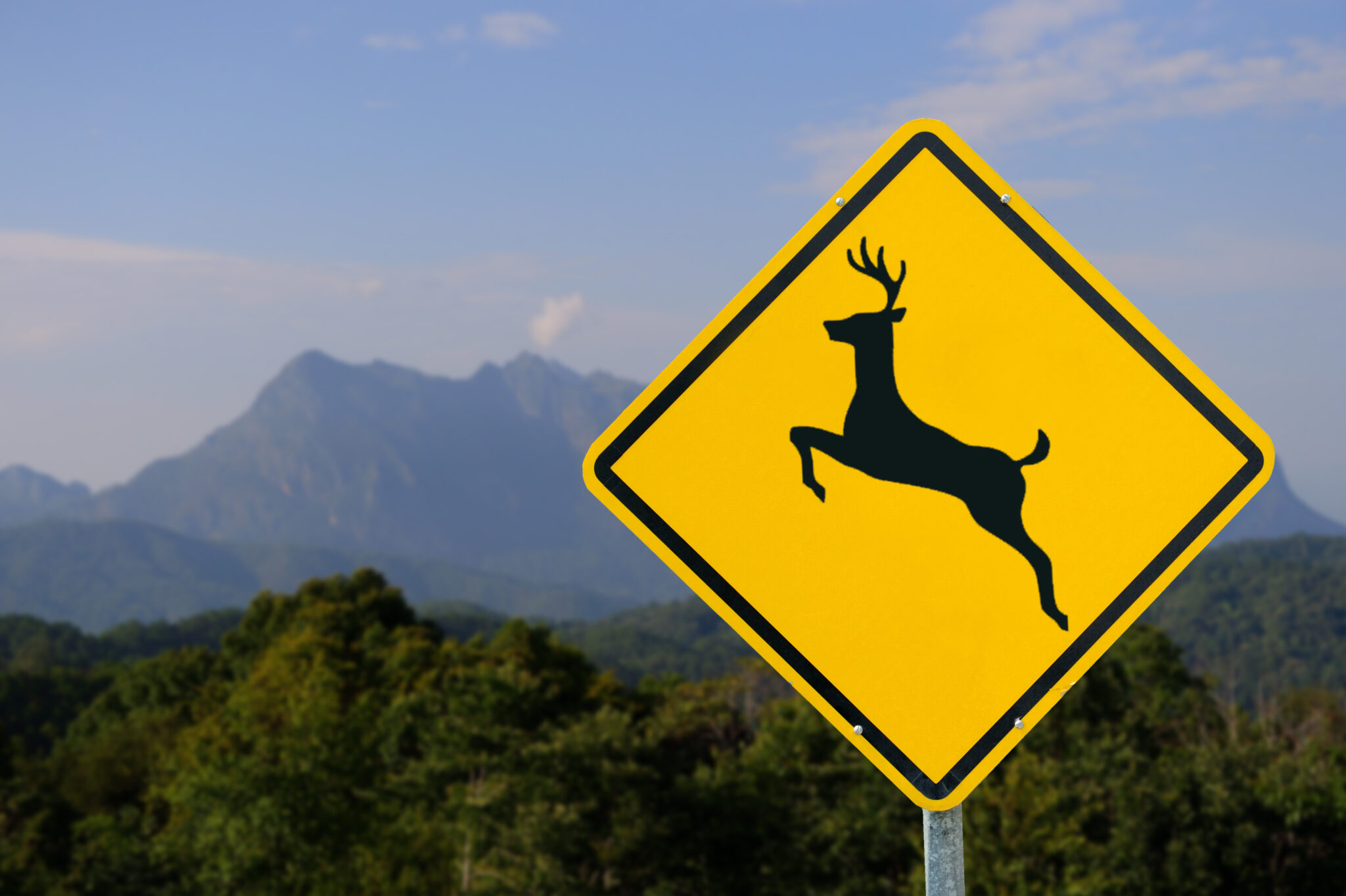 Photo of deer crossing warning sign for motorists.