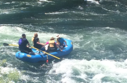 Photo of rafters on the Bowl & Pitcher.
