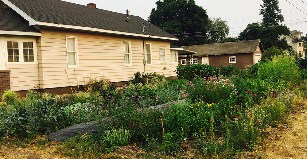 Photo of house with side yard featuring perennials and annuals in full bloom.