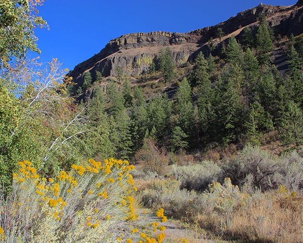 Photo of south wall of Northrup Canyon and sagebrush.