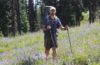 Photo of hiker on trail through lupine flowers.