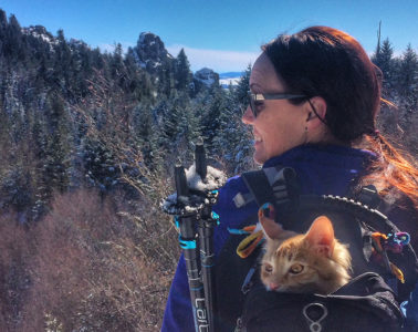 Photo of Leon the cat enjoying the view from a backpack pack.