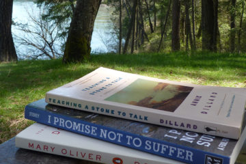 photo of three books on a bench.