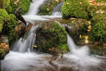 Photo of waterfall near Burke, Idaho.