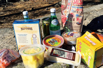 Photo of picnic food include chips, crackers, cheese, salsa, and carrots.
