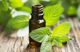 Photo of spearmint and essential oil bottle.