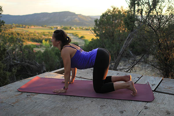 Photo of author in cat-dow flow pose.