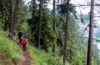 Photo of hikers on single track hiking trail on foggy mountain side.