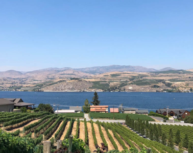 View of Field Hills Winery in Chelan.