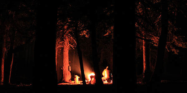 Photo of campfire through the trees.