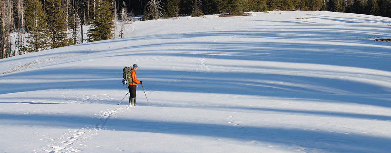 Photo from a distance of hiker in the snow.