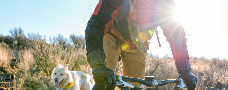 Photo of mountain biker and his dog.