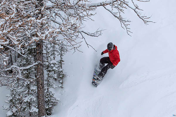 Photo of snowboarder in powder.