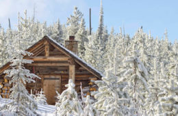 Photo of Snow Peak cabin through snow covered trees.