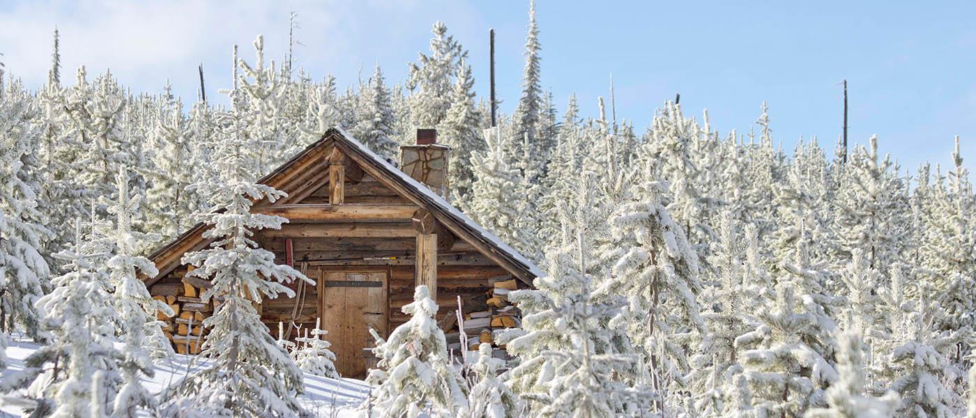 Photo of Snow Peak cabin through snow covered trees.