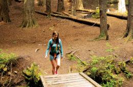Photo of hiker crossing wooden bridge in cedar grove.