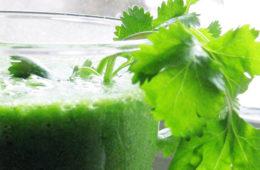 photo of smoothie with cilantro sprig.