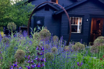 Photo of wildflower garden in front of house.