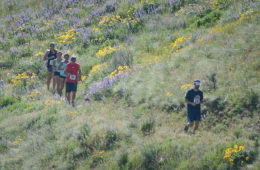 Photo of runners along single track trail.