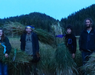 Photo of teenagers in field at dusk holding hay.