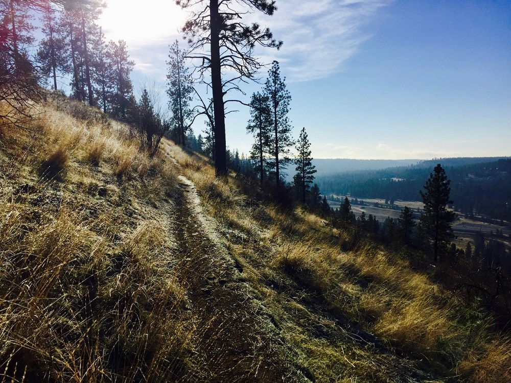 Narrow dirt trail along High Drive Bluff with a view of Spokane's Latah Valley.