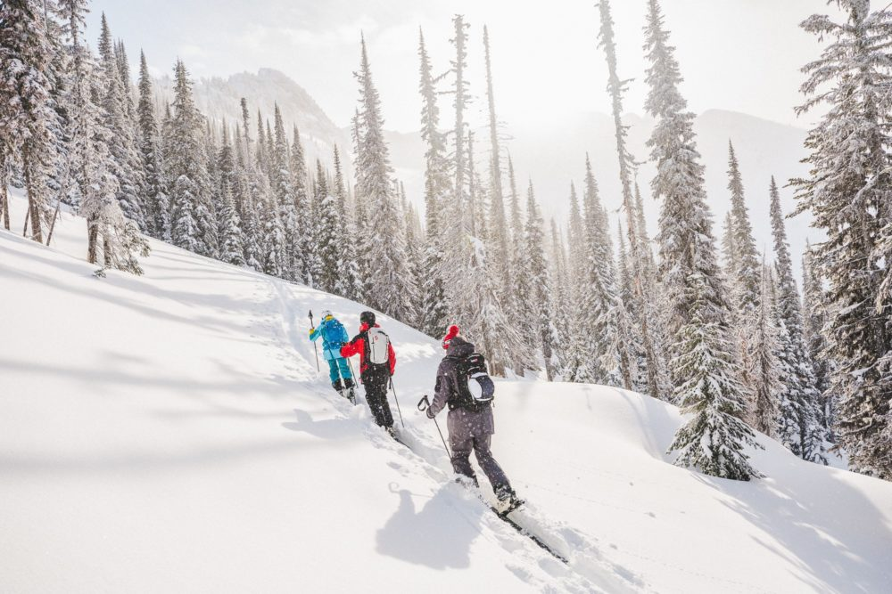 A group cross country skiing.