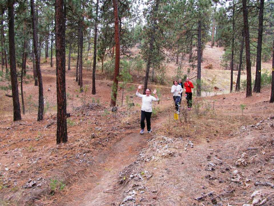 People running on a forest trail.