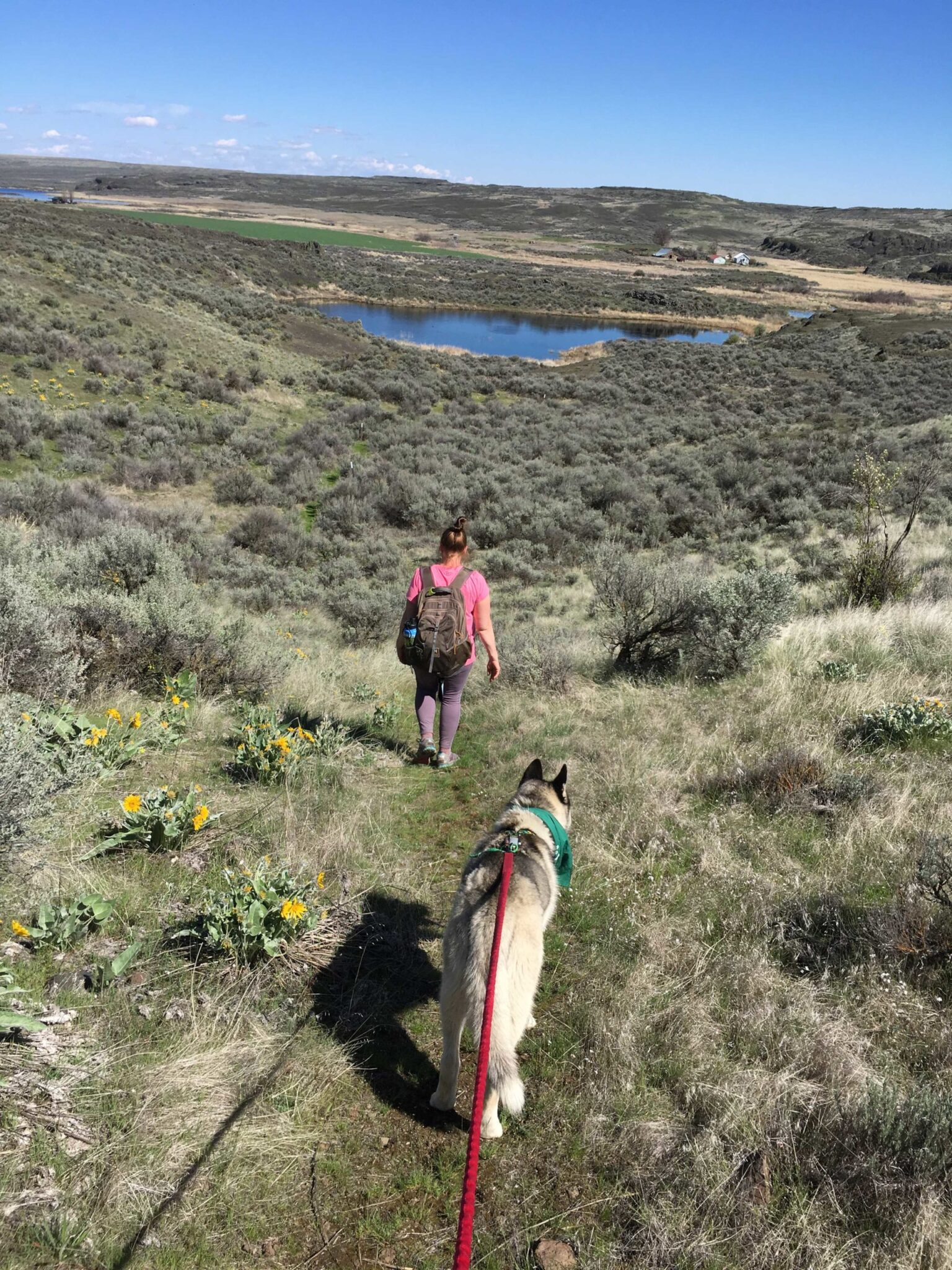 A woman and her dog walking on a trail towards a lake.