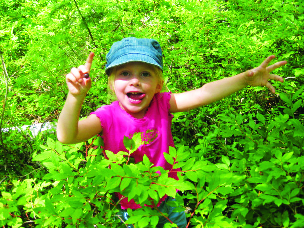 Child smiles while picking wild huckleberries.